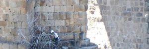 a5-monumento-historico-2